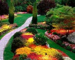 Ландшафтный дизайн своими руками – декоративные насаждения в саду
