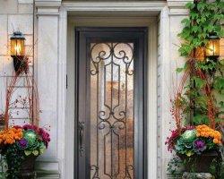 Кованные двери